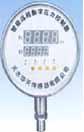 华天 DPI-4系列智能远程数字压力控制器